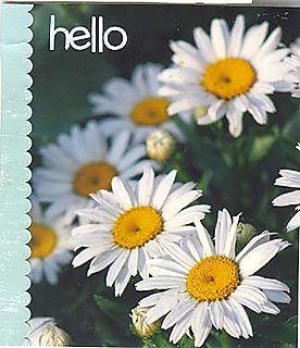 Hello daisy photocard