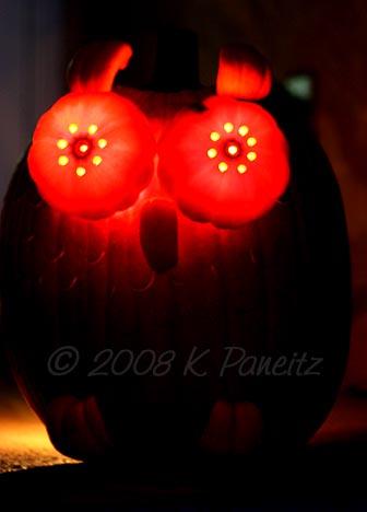 2008 Owl Jack O'Lantern2