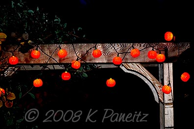 Arbor pumpkin lights2