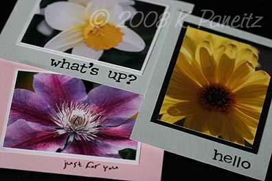 Garden Notecard Set cards