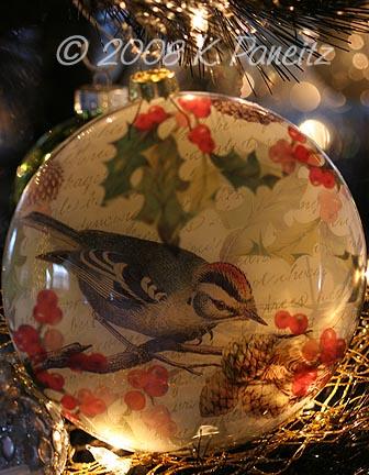 Ornament Warbler