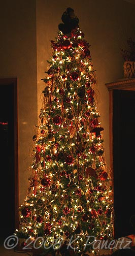 2008 Olde Fashioned Tree1