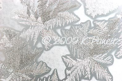 Frost crystals3