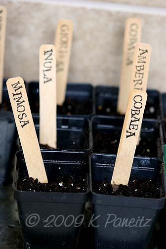 Seed labels1