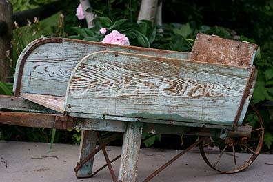 Vintage wheelbarrow3