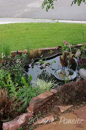 2009 Spring Pond