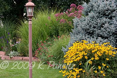 2009 August Garden1