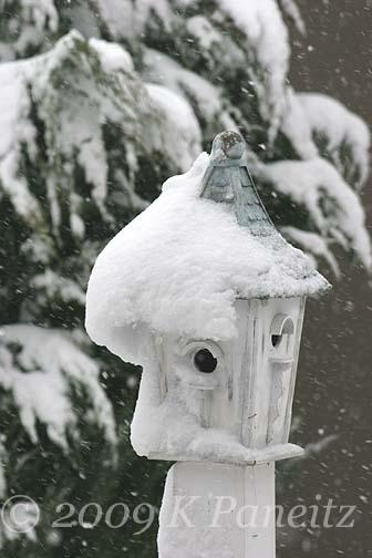 Snowy birdhouse1