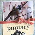 January Gardening by Letter card