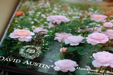 David Austin Catalog