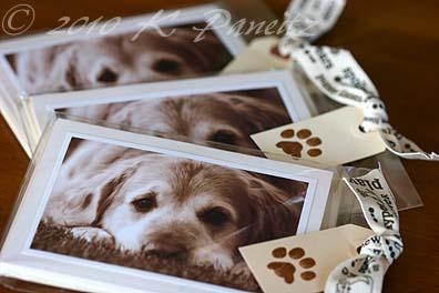 Dog Cards2