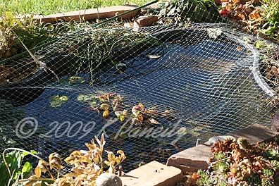 Pond screen
