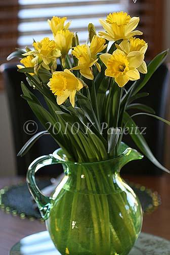 Daffodil pitcher