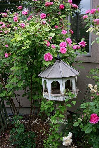 Vintage Birdfeeder