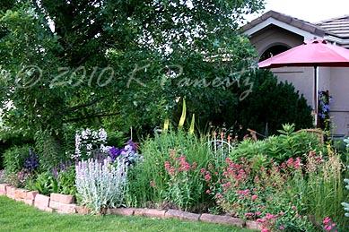 2010 Front Garden