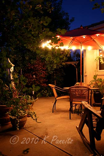 2010 Back Patio night