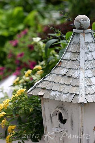 Birdhouse with lantana
