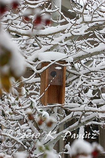 Snowy Flicker Box
