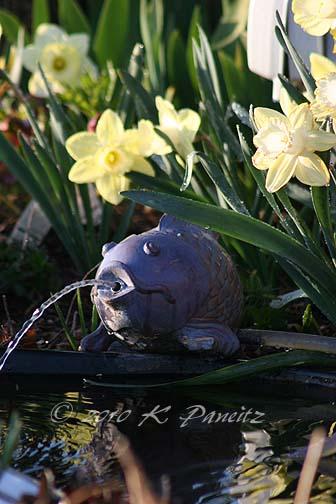 Pond spouter