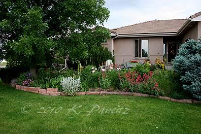 2010 Spring Garden