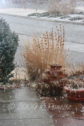 Feb snow3