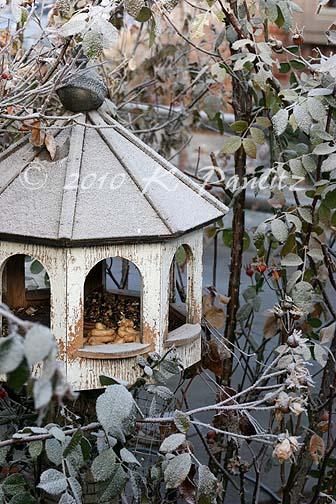 Frosted birdfeeder