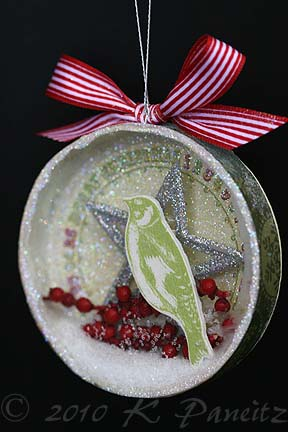 3-D snow globe ornament1