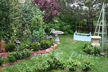 2011 June Garden1