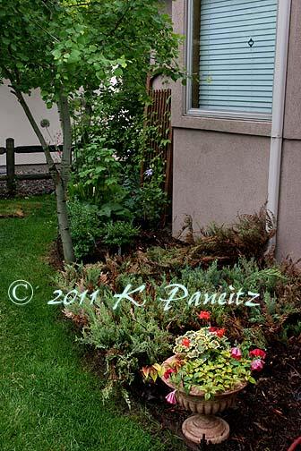 2011 Spring Garden9