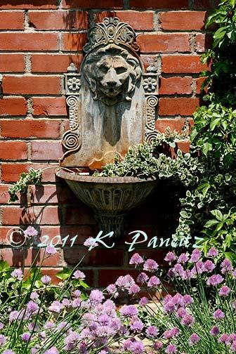 Boulder Garden Tour11