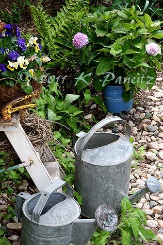 Back garden corner1