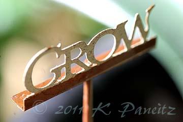 Grow pick