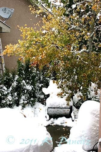 2011 Oct Snow1