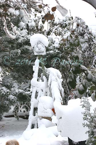 2011 Nov Snow pics6