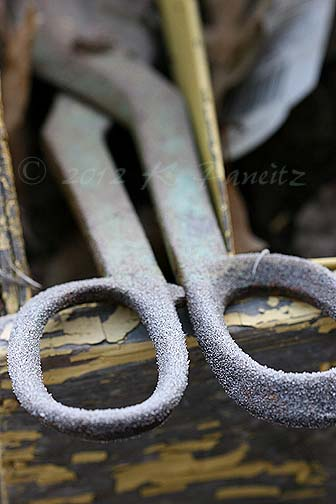 Frosted Vintage Shears