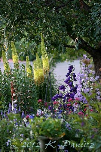 2012 June Front Garden