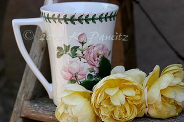Coffee & roses1