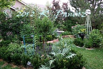 2012 June Back Garden1