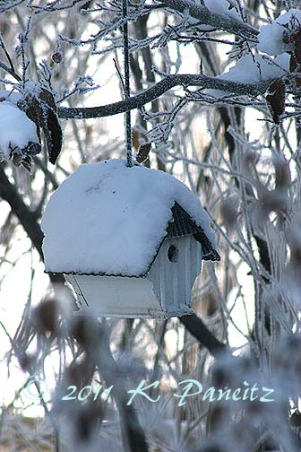 Frosted birdhouse