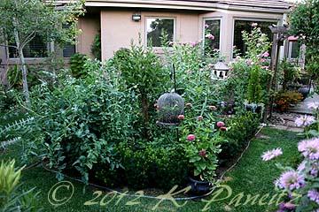 2012 July Back Garden4