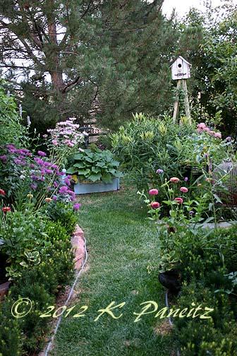 2012 July Back Garden3