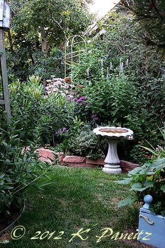 2012 July Back Garden2
