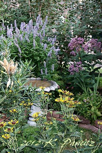 2012 August Garden