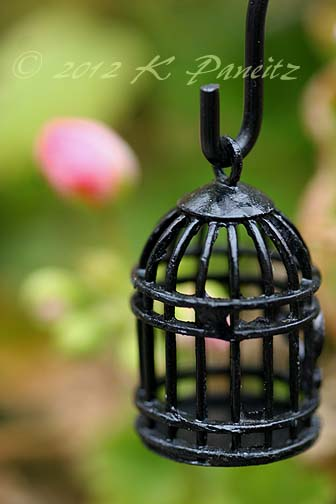 Fairy Garden Birdcage