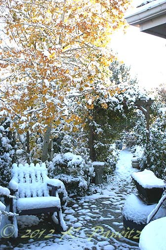 2012 Oct Snow