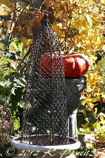 2012 Nov Garden3