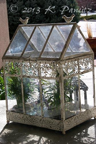 fairy garden terrarium - Fairy Garden Terrarium