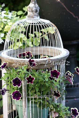 2013 Birdcage Container