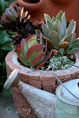 Kaseys Korner Container Gardening
