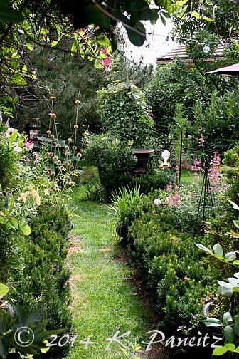 2014 Back Garden
